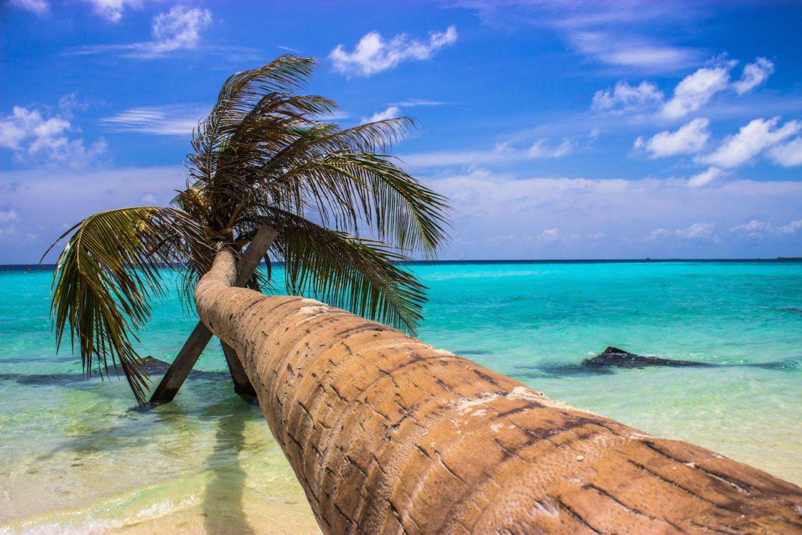 maldives maafushi 16 1125x750 - MALDIVAS EM MODO ECONÔMICO: TUDO QUE VOCÊ PRECISA SABER